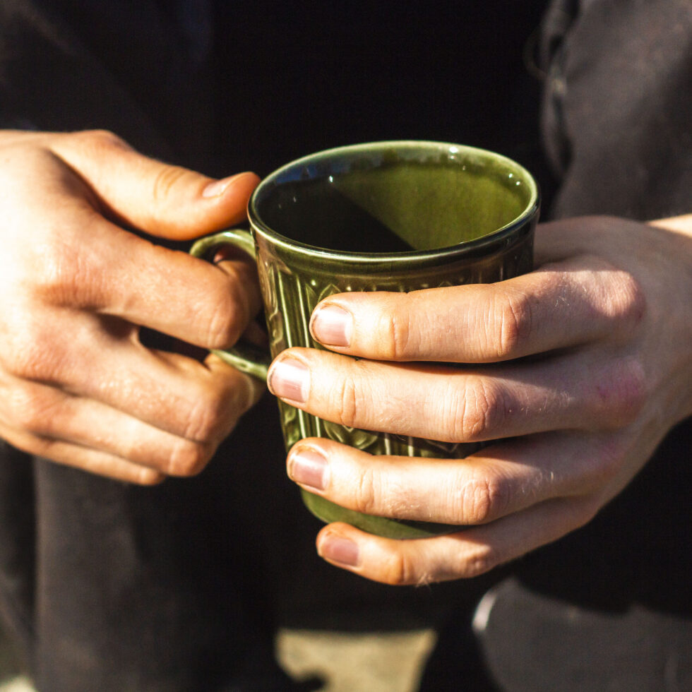 Opskrift på te med citronmelisse