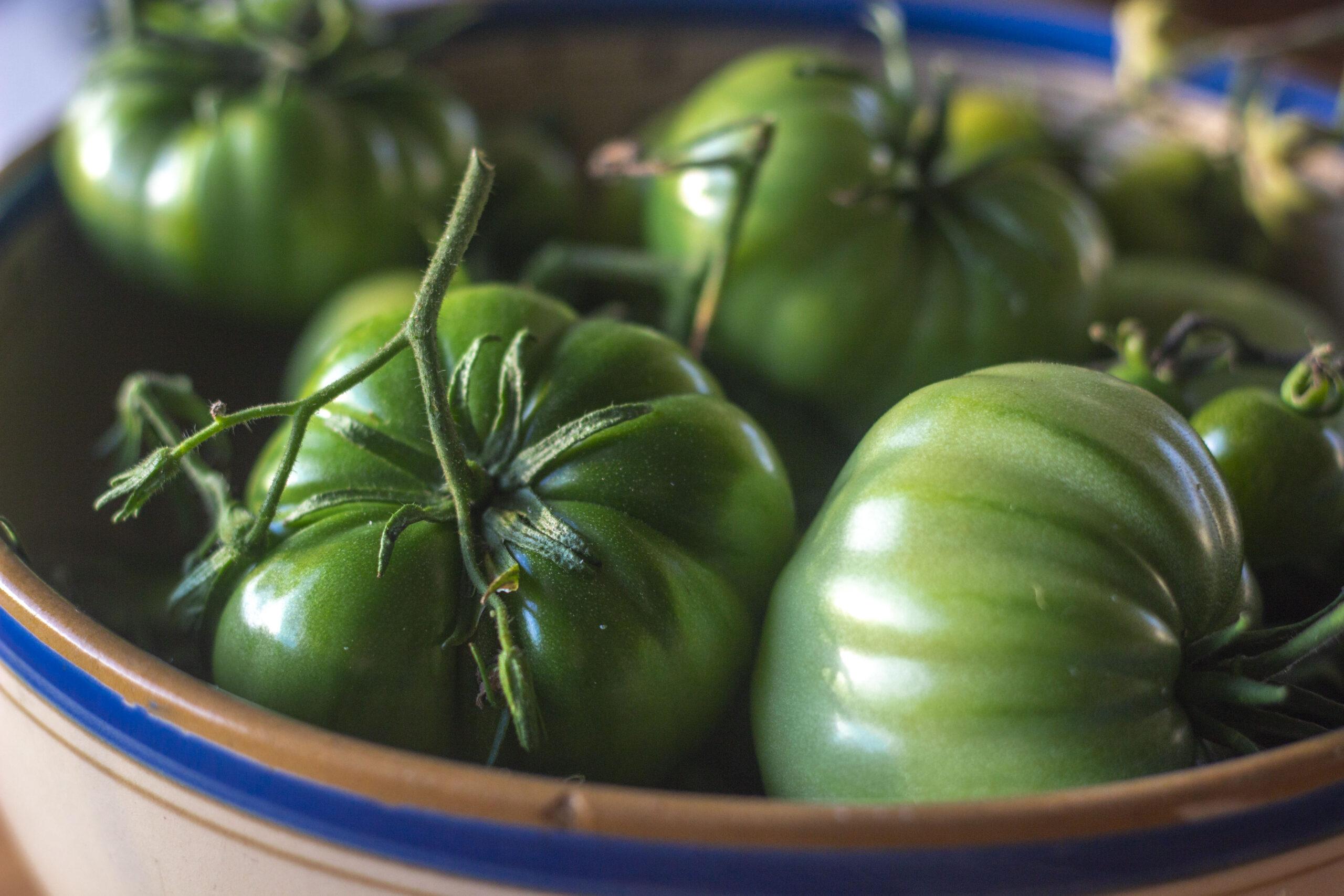 Hvad bruger man syltede grønne tomater til