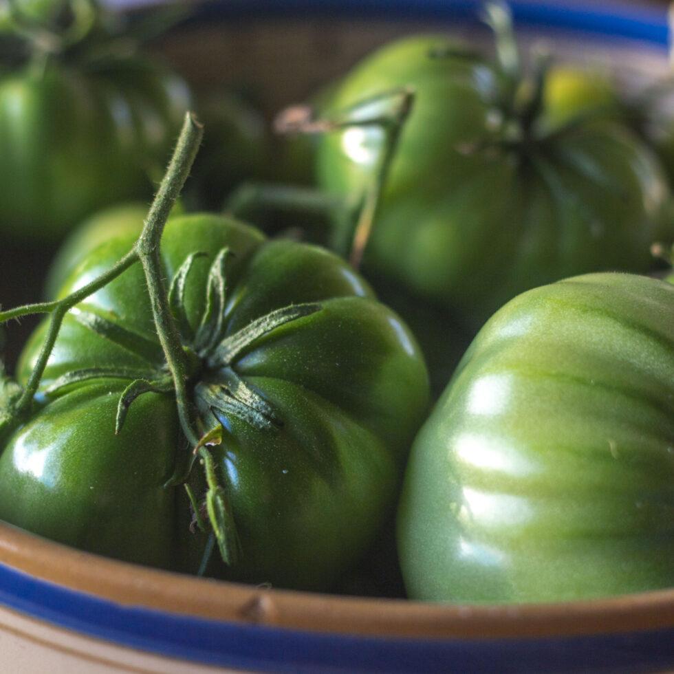 Krydrede & søde – Opskrift på syltede, grønne tomater