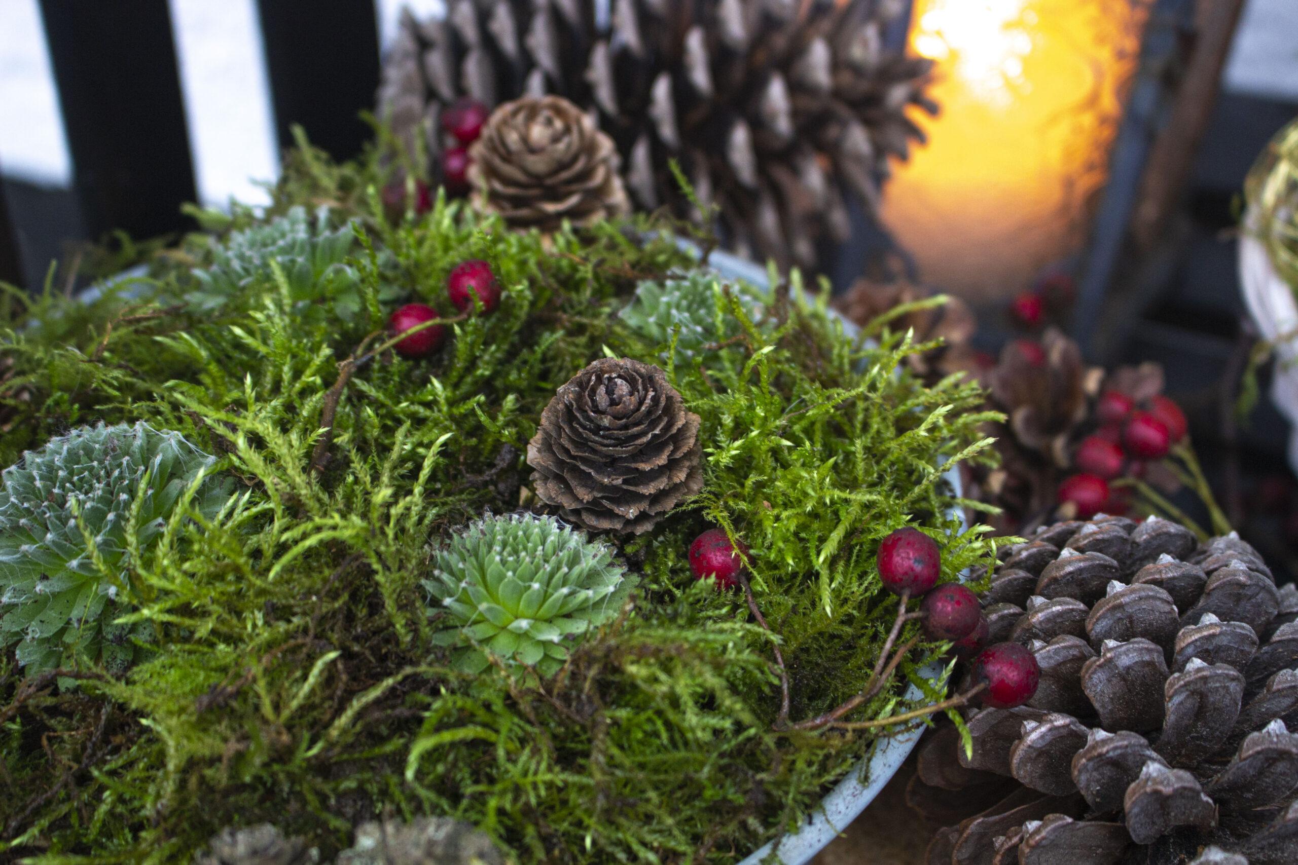 Sæt-udendørs-julepynt-i-krukker