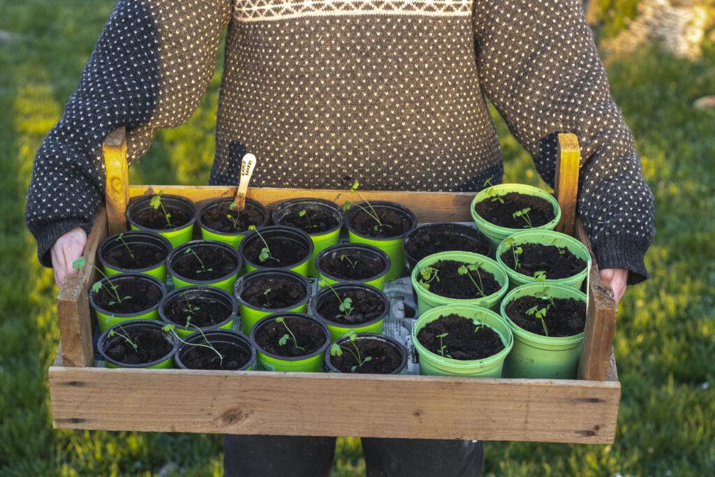 Haven-i-april-er-en-travl-måned