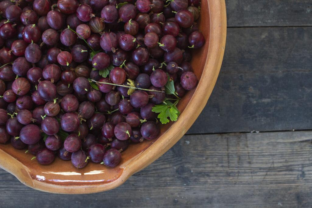 Høst bær, krydderurter & grøntsager