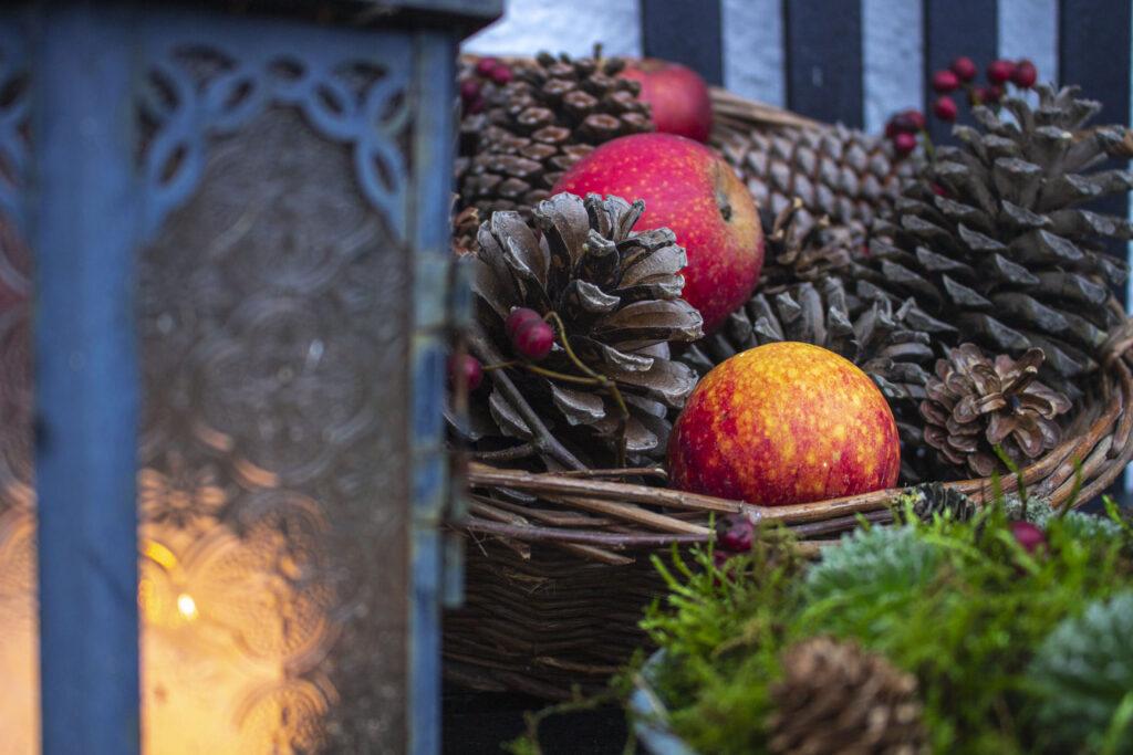 Pynt decemberhaven med gran & dekorationer