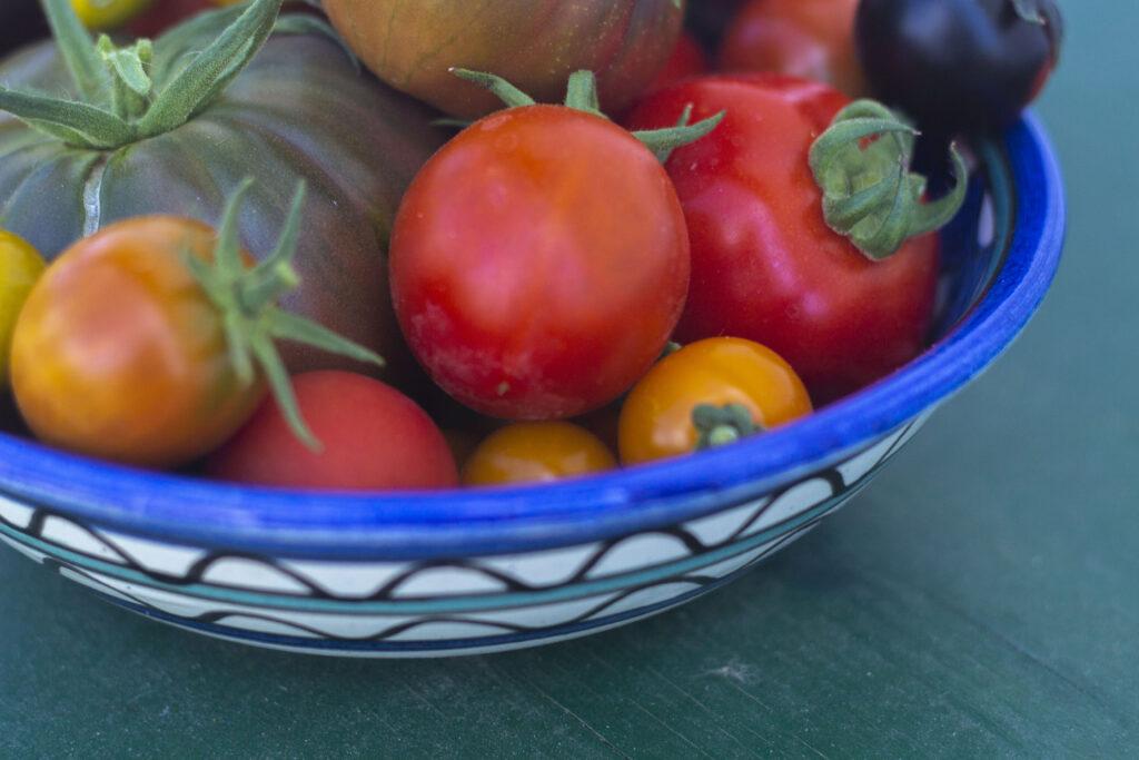Dejlige opskrifter på tomater – Brug dem i madlavningen